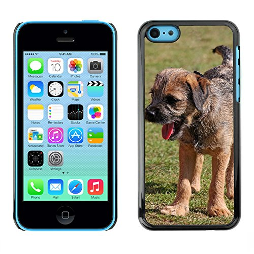 Just Phone Cases Hard plastica indietro Case Custodie Cover pelle protettiva Per // M00127613 Border Terrier Terrier Puppy Dog Pup // Apple iPhone 5C