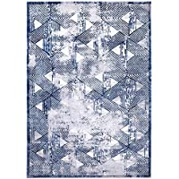 Home Dynamix Nicole Miller Kenmare Carolina Area Rug, 31.5x47, Distressed Gray/Blue