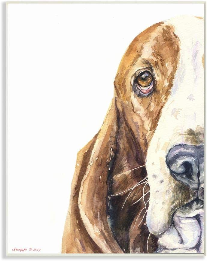 Stupell Industries Cute Large Dog Head Basset Hound Pet Animal Watercolor Painting Wall Plaque, 10 x 15, Multi-Color