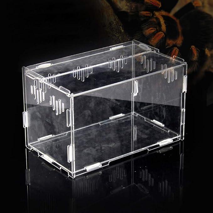 Casas para Reptiles, Tanque Transparente de la Caja de acrílico, Terrario de plástico Reptiles, terrarios, lagartos y Tortugas (30 * 20 * 15 CM)