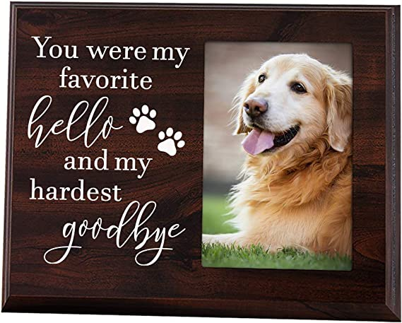 Black Cocker Spaniel Thank You FROM THE DOG Poem 8 x 10 Picture Fun 10x8 Print