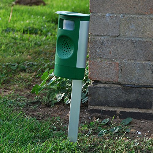 Amazon.com : Mega-sonic Garden Cat Repeller : Home Pest Repellents : Garden & Outdoor