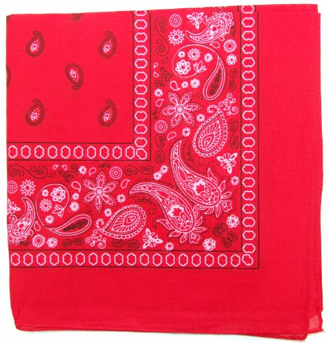 Kaiser Novelty Bandanas Paisley Cotton Bandanas (Red  22 X 22 in) -
