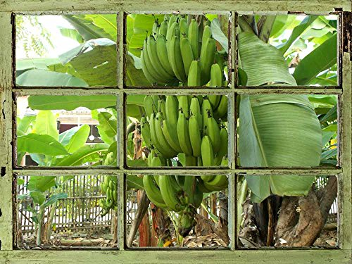 Window View Wall Mural Banana Trees in the Yard Vintage Style Wall Decor Peel and Stick Adhesive Vinyl Material