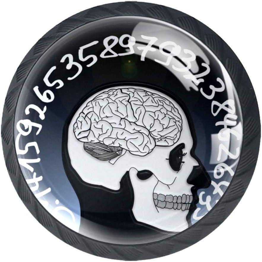 Haminaya Cráneo Cerebro Pomo Tirador Redondo de plástico para Decoración de Muebles,4 Piezas 3.5x2.8cm