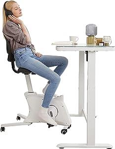 Famous TikTok Desk Bike Chair FlexiSpot Adjustable Exercise Workstation Bike Desk Standing Desk Cycle for Work From Home