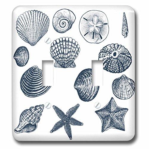 3dRose LLC lsp_155830_2 Blue Sea Shells Nautical Beach Theme Ocean Art Double Toggle Switch (Nautical Switch Plate)