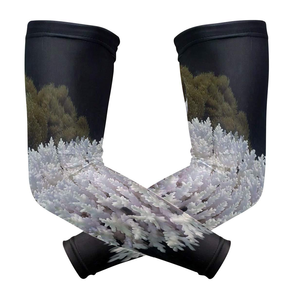 アームスリーブ The Best we Never Seen Cuba's Coral Reef メンズ 太陽 UV保護スリーブ アームウォーマー クールロングセット カバー B07HNTR2RC 色2 One Size