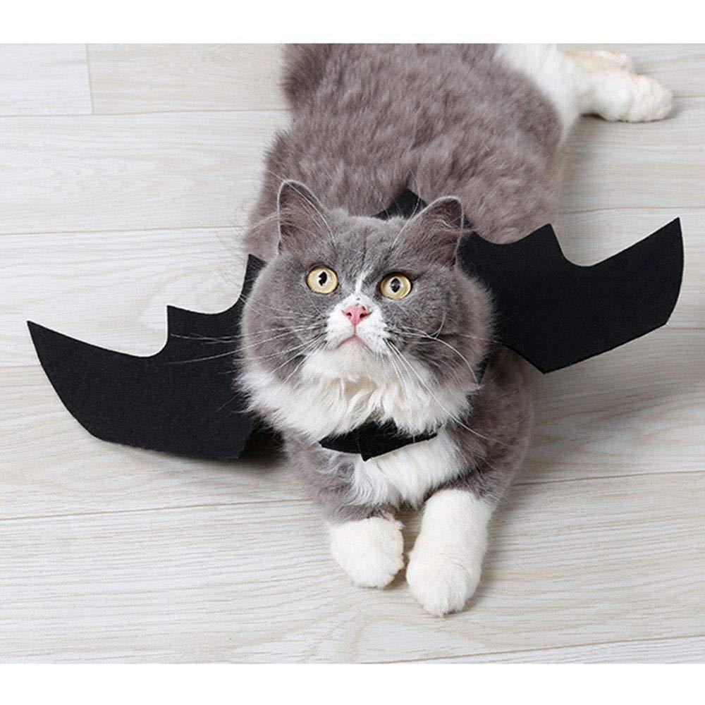 BBsmile Alas de Murciélago de Moda para Mascotas, Disfraz de Murciélago de Halloween para Perros, Cosplay de Murciélagos de Juguete para Gatos y Perros ...