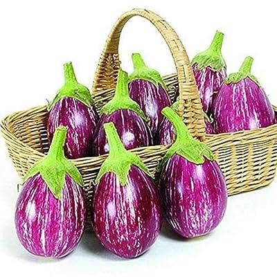 Fairy Tale F1 Eggplant Seeds - Non-GMO - 200 Seeds : Garden & Outdoor