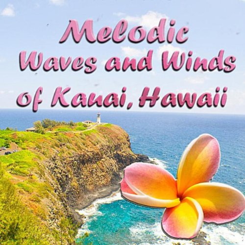 Melodic waves and winds of kauai hawaii by rb on amazon for Department of motor vehicles kauai