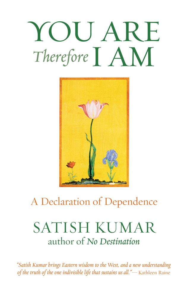 You Are, Therefore I Am: A Declaration of Dependence ebook