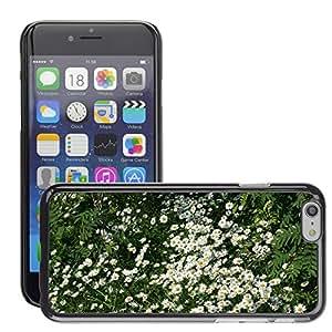 "Print Motif Coque de protection Case Cover // M00157084 Margaritas flores de la margarita // Apple iPhone 6 6S 6G PLUS 5.5"""