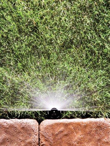 Rain Bird 8HC1 Spray Nozzle, 180° Half Circle Pattern, 5' - 8' Spray Distance