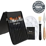 Bianyo 12 Piece Artist Brush Set (Includes Palette, Knife, Large Brush) in Zippered Carry Case