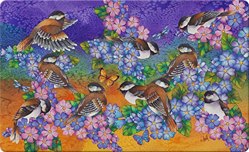 Toland Home Garden Chickadee Welcome 18 x 30 Inch Decorative Bird Floor Mat Spring Flower Doormat Chickadee Hose Holder