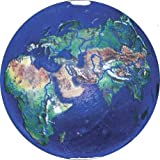 Blue Earth Marble With Natural Earth Continents, Recycled Glass By Shasta Vis...