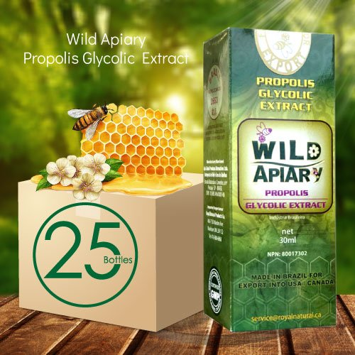 Official distributor - 25 Bottles Wild Apiary Green Bee Propolis Liquid-Alcohol Free, Wax Free, Sugar Free by Wild Apiary