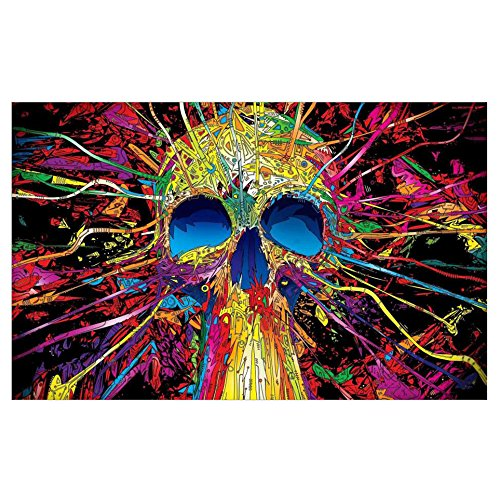 (Colorful Skull 5D Full Drill Diamond Painting)