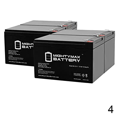 Mighty Max Battery ML12-12 - 12V 12AH F2 Battery EZIP Scooter 650 750 900-4 Pack Brand Product: Electronics [5Bkhe0305690]