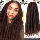 AISI BEAUTY Ombre Marley Hair for Twists Afro Kinky Marley Braiding Hair Extensions Synthetic Twist Crochet Braiding Hair Hair Extension 3 Packs 18 inches (T1B-30)