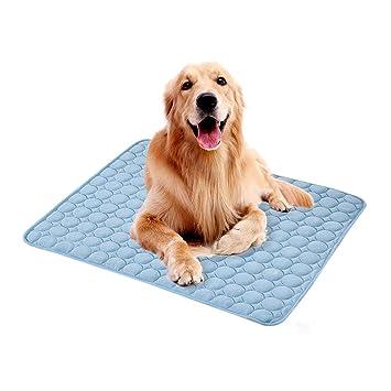 Wankd Moda Conveniente Lavable Mascota Gato Perro Mat para ...