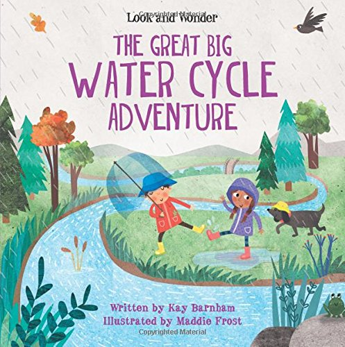 The Great Big Water Cycle Adventure (Look and (Great Waters)