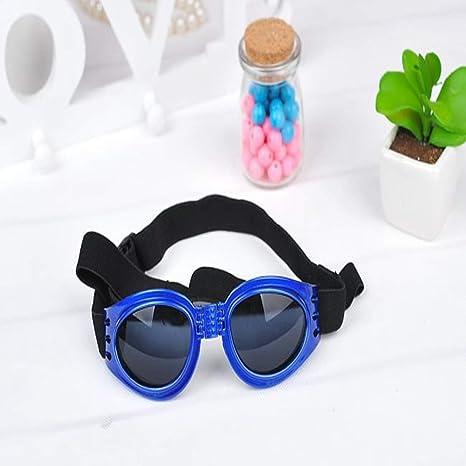 Amazon.com: Gafas de sol egipcias para perro, gafas ...