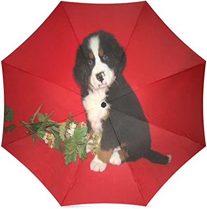 Custom Cute Cat and Dog Compact Travel Windproof Rainproof Foldable Umbrella