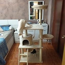 AmazonBasics - Torre en árbol con cerramiento para gatos, mediano, 55,9x147,3x48,3 cm, beige: Amazon.es: Productos para mascotas