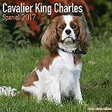 Cavalier King Charles Spaniel Calendar 2017 - Dog Breed Calendars - 2016 - 2017 wall calendars - 16 Month by Avonside