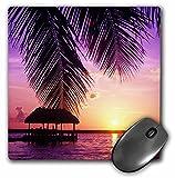 3dRose LLC 8 x 8 x 0.25 Inches John Pennekamp State Park Key West Florida Greg Johnston Mouse Pad (mp_89161_1)
