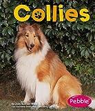 Collies, Jody Sullivan Rake and Jody Sullivan Rake, 1429600152
