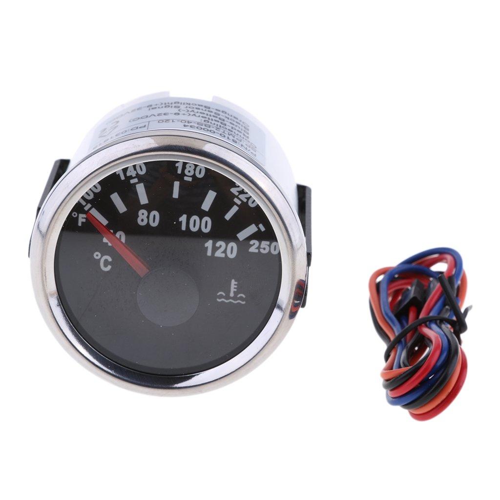 Homyl 52mm 9V-32V Compteur Temperature d'Eau de Voiture Auto 40 - 120 ℃