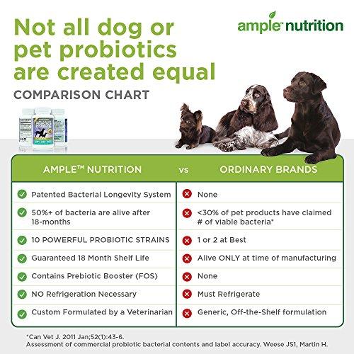 Probiotics For Dogs Prebiotic Probiotics
