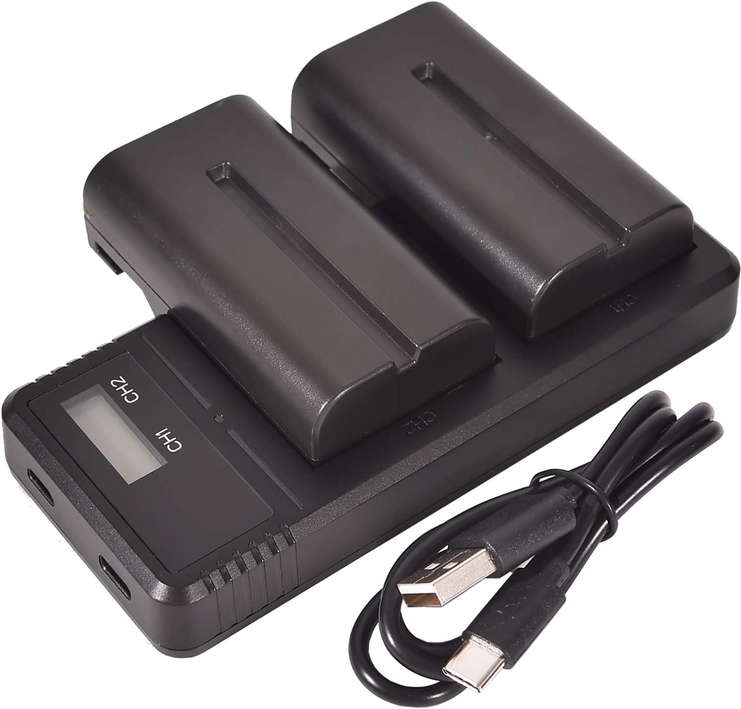 2 Pack CCD-SC5 CCD-SC6 Cargador LCD Dual de Carga r/ápida Compatible para NP-F330 CCD-SC55E CCD-RV200 CCD-SC5//E CCD-SC55 NP-F550 DSTE Repuesto Bater/ía NP-F570 y Sony CCD-RV100 NP-F530