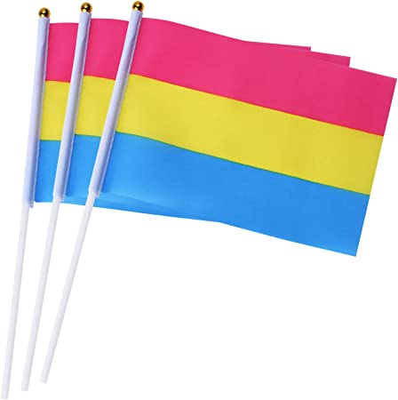 pansexual party
