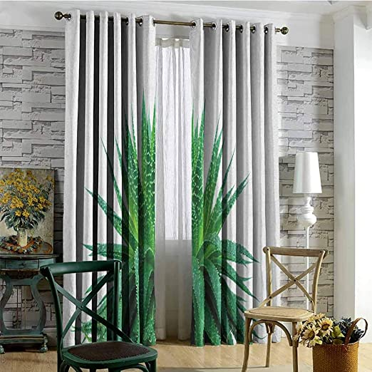 Amazon Com Hengshu Plant 99 Blackout Curtains Medicinal Aloe Vera With Vibrant Colors Indigenous Species Alternative Natural Remedy For Bedroom Kindergarten Living Room W72 X L108 Inch Fern Green Home Kitchen