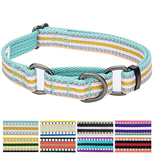 Blueberry Pet 8 Colors 3M Reflective Multi-colored Stripe Safety Training Martingale Dog Collar, Pastel Blue and Beige, Medium, Heavy Duty Adjustable Collars for Dogs (Martingale Bandana)