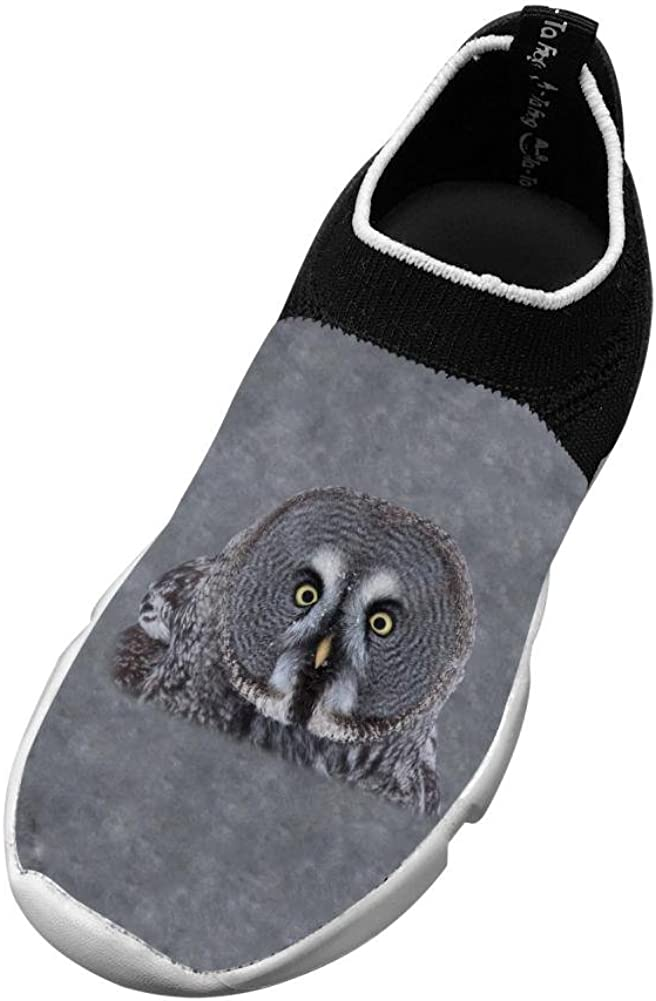 Sports Flywire Weaving Gym Shoes For Boy Girl,Print Great Grey Owl,