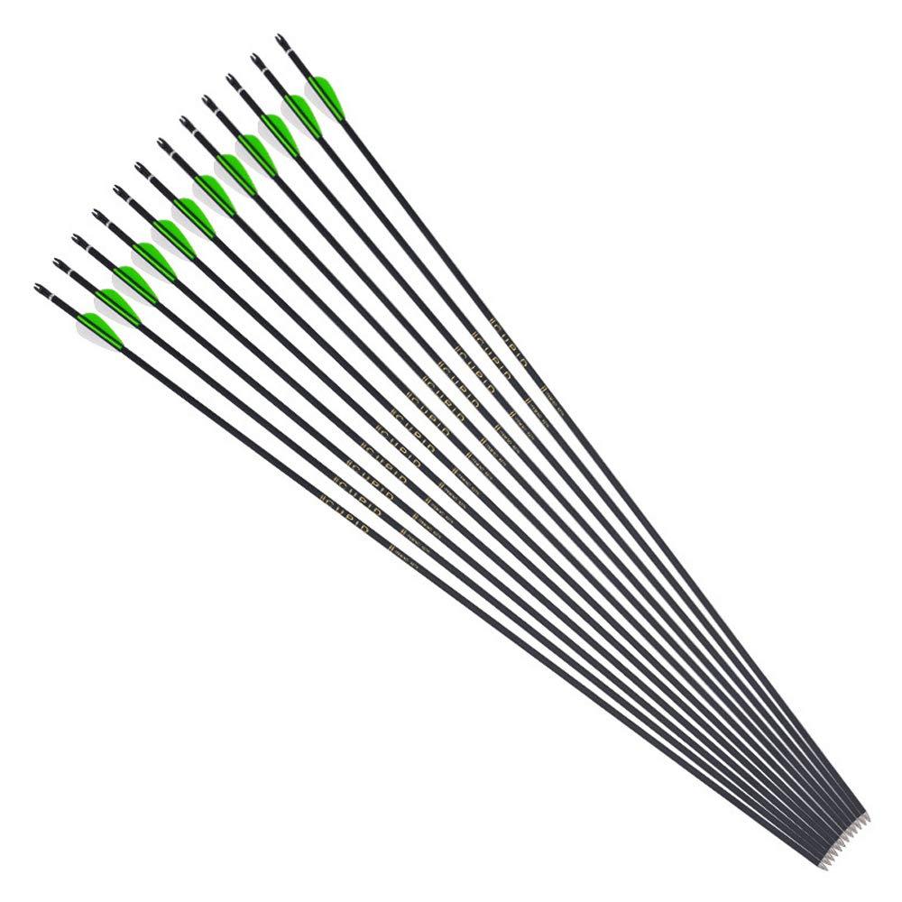 WEREWOLVES 32Pure Carbon Archery Arrows Spine 600 Fletched Arrows f/ür Recurvebogen und Compoundbogen