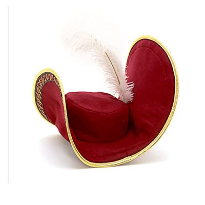Disney Store Captain Hook Costume Pirate Hat with Feather for Boys (One Size): Toys & Games