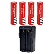 RedEarth 4pcs 18650 3000mAh 3.7V Lithium Li-ion Flat Top High Drain Dynamic Rechargeable Battery Charger Set for Cree Headlamp Head Torch Flashlight