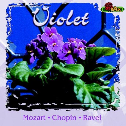 Violet Various artists
