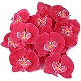 20x Flor Orquídea Artificial de Pelo Muñeca Decoración de Boda (fucsia)