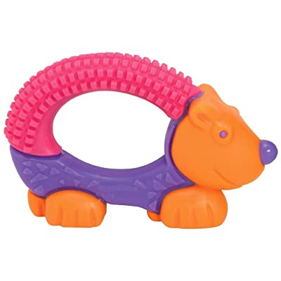 The First Years Bristle Buddy Teether - Assorted Design: Beauty