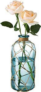 Diamond Star Rustic Glass Bottle Vase Decorative Blue Flower Vase with Creative Rope Net (Large)