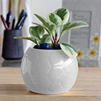 UGAOO Football Ceramic Pot (White, 5.1 inch Diameter)
