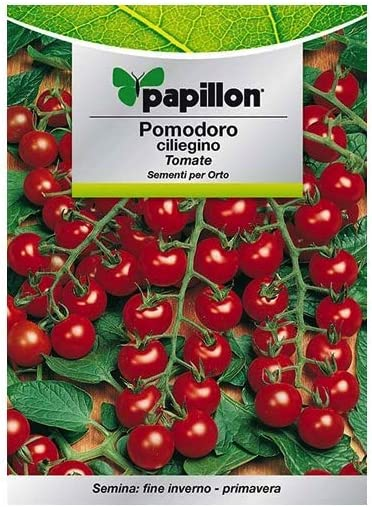 Semillas Tomate Cherry (1 Gramo): Amazon.es: Jardín