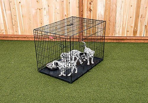 Lucky Dog 2 Door Dog Kennel (42-inch)